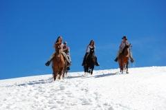 horses-argentina